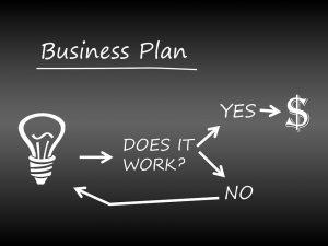 skema business plan